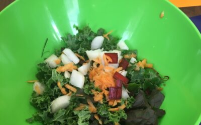 Kale Salad / Ensalada de la Col Rizada