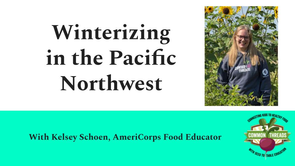 How to winterize your garden (Pacific Northwest)
