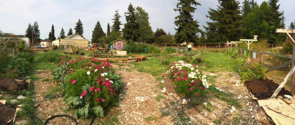 Birchwood Garden
