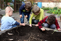 Digging in the dirt, learning about soil