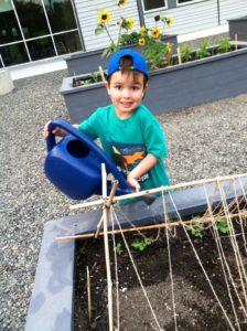 Summer garden care volunteer Kaleb