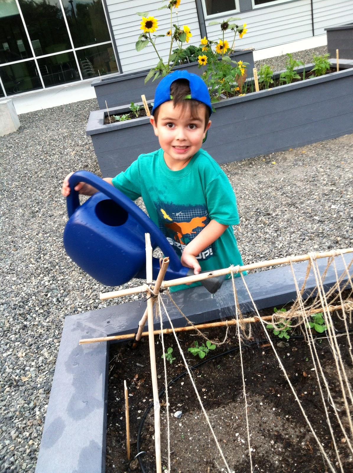 Summer Garden Care | Common Threads Farm