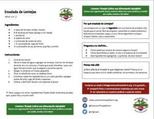 Lentil Salad recipe card, Spanish