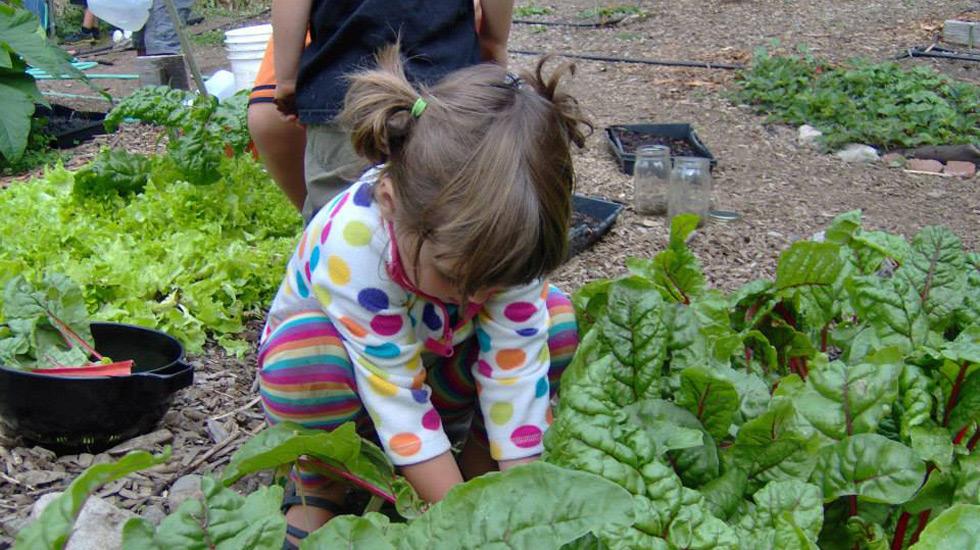 Preschool-in-the-Garden
