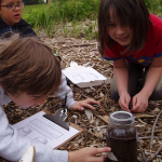 Kids doing soil science activity