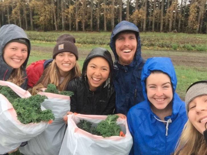 Six people with kale