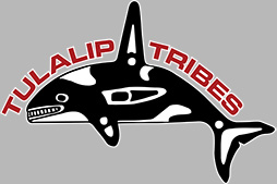 Tulalip Tribes Whale Logo - on Gray