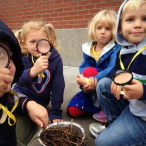 Kindergarteners get an up close look at compost critters